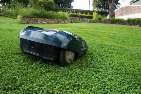 Mäh-Roboter bei der Rasenpflege