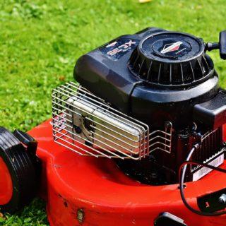 Benzin oder Elektro: Welcher Rasenmäher für welches Einsatzgebiet?