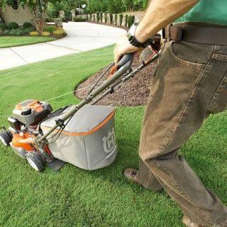 Rasen richtig pflegen - Darauf sollten man unbedingt achten