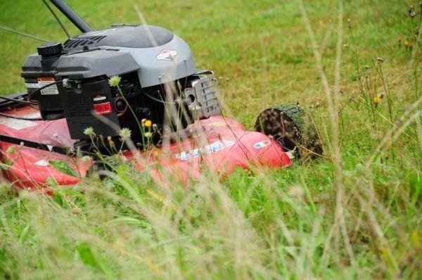 Akku-Rasenmäher im tiefen Gras