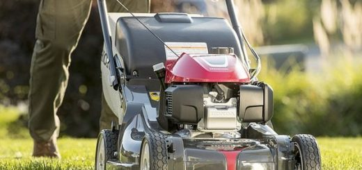 Rasen mähen mit Benzinrasenmäher