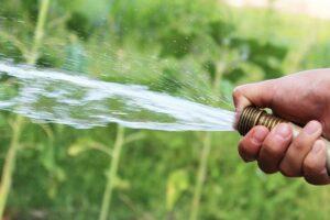 Rasen wässern - Wie viel Wasser benötigt der Rasen?