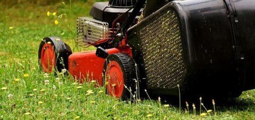 Rasenpflege im Frühjahr
