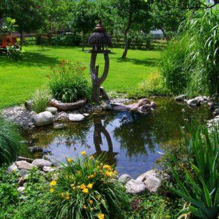 Kescher für den Gartenteich