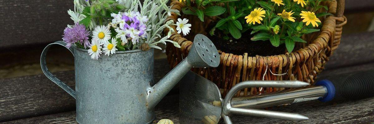 Ratgeber Gartengeräte